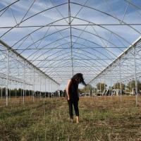 Ecoutes Au Vert / Genève / Aventures sonores au grand air! / Soundwall interviews: Daria / 144944204