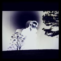 Ecoutes Au Vert / Genève / Aventures sonores au grand air! / Walter Gross - [Imprint/Trigger] Double Split EPs  / 2036920511