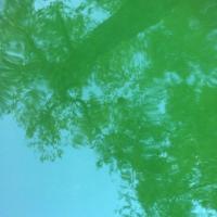 Ecoutes Au Vert / Genève / Aventures sonores au grand air! /  ECOUTES AU VERT au CABINET A 20h30: Concerts, indie pop rock de Berlin: SKIING + CLASSIC MUSCLE / 1483055648
