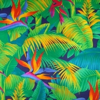 Ecoutes Au Vert / Genève / Aventures sonores au grand air! /  ECOUTES AU VERT TROPICAL & AFRICAN MUSICS PARTY au BATEAU GENEVE avec AWESOME TAPES FROM AFRICA (Los Angeles) + JEAN TOUSSAINT (ex-Turkish D / Palmwine Records – Lyon) / 1492361413