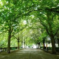 Ecoutes Au Vert / Genève / Aventures sonores au grand air! / Parc Beaulieu