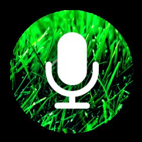 Ecoutes Au Vert / Genève / Aventures sonores au grand air! / Entretiens